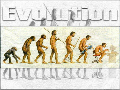 生物进化.jpg